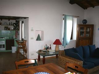 La Casa del Noce 4+2Px Immersa nel verde e nella pace delle colline umbre. - Massa Martana vacation rentals