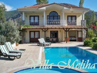 Villa Meliha - Dalyan vacation rentals