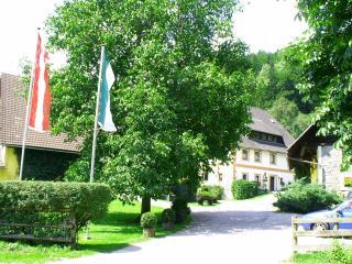 Ferienwohnung am Moarhof - Palfau vacation rentals