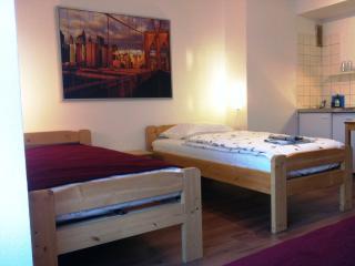 Flughafennahe, renovierte, gemütliche Appartements - Düsseldorf vacation rentals