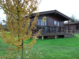 Comfortable 3 bedroom Devizes Lodge with Internet Access - Devizes vacation rentals