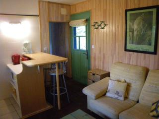 1 bedroom Condo with Washing Machine in Soustons - Soustons vacation rentals