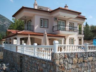 Villa Tia - Yesiluzumlu vacation rentals