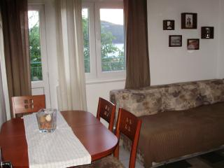 Apartman Tisno - Tisno vacation rentals