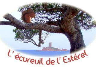 L'Ecureuil de l'Estérel - Boulouris vacation rentals