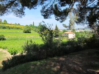 Bright 6 bedroom Villa in Vaison-la-Romaine - Vaison-la-Romaine vacation rentals