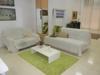 Comfortable 2 bedroom Apartment in Alicante - Alicante vacation rentals