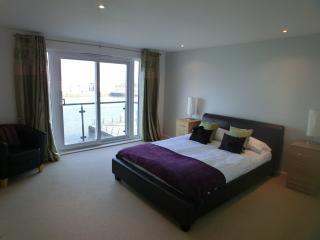 Cozy 3 bedroom Condo in Llanelli - Llanelli vacation rentals