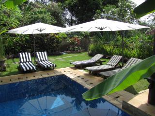 Villa Teras: 3 bedroom pool villa near Ubud, Bali - Ubud vacation rentals
