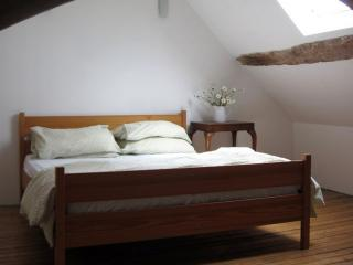 Wonderful 3 bedroom Mayenne Gite with Central Heating - Mayenne vacation rentals