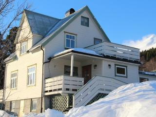 Wonderful House with Internet Access and Television - Lyngseidet vacation rentals