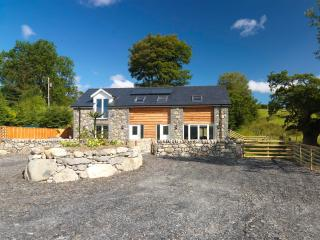 Nice Cottage with Internet Access and Wireless Internet - Llanuwchllyn vacation rentals