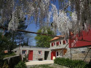 Casa da Pereira Azeda (completa) - Penafiel vacation rentals