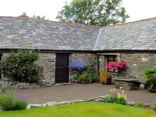 Plough Cottage - Boscastle vacation rentals