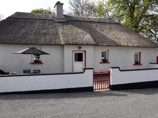 Nice Cottage with Internet Access and Television - Kilkenny vacation rentals