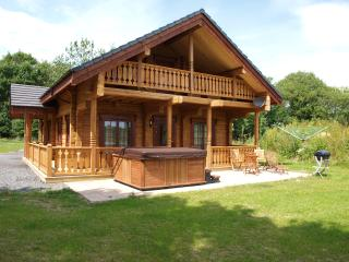 3 bedroom Cabin with Satellite Or Cable TV in Carno - Carno vacation rentals