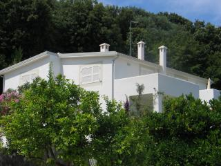 Romantic 1 bedroom Villa in Rodi Garganico - Rodi Garganico vacation rentals