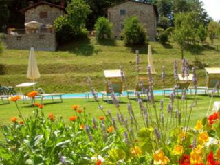 Perfect 3 bedroom House in San Romano in Garfagnana - San Romano in Garfagnana vacation rentals