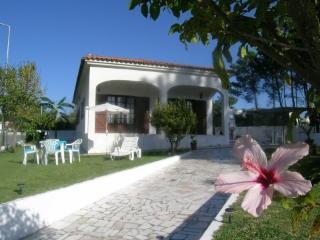 Vivenda Raquel - beach 1km - Sesimbra vacation rentals