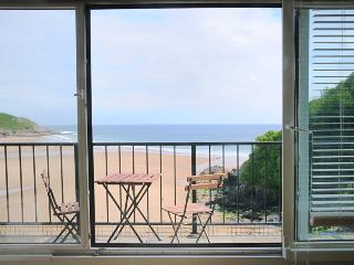 Gorgeous 1 bedroom Condo in Bishopston - Bishopston vacation rentals