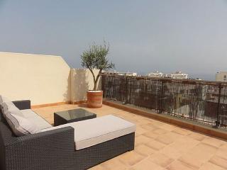 Miradror de Nerja  T0272 - Nerja vacation rentals