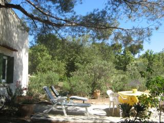 PROVENCE CHARMING COTTAGE BETWEEN AIX & AVIGNON - Lambesc vacation rentals