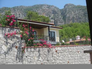 Nice Villa with Internet Access and A/C - Gocek vacation rentals