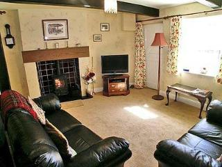 River View Cottage - Cumbria vacation rentals