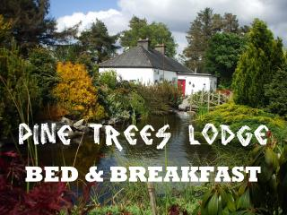 Pine Trees Lodge B & B Lodge - Foxford vacation rentals