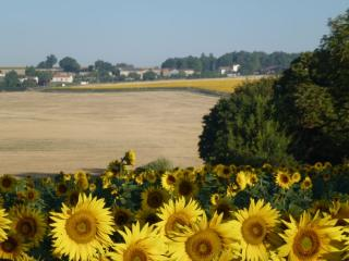 Country gite, sleeps 10, with pool and great views - Saint Jean d'Angely vacation rentals