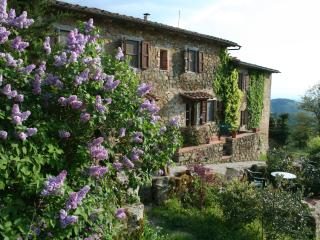 Cozy 2 bedroom Gaiole in Chianti Apartment with Internet Access - Gaiole in Chianti vacation rentals