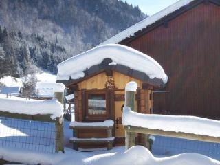Charming 4 bedroom Morzine-Avoriaz Chalet with Grill - Morzine-Avoriaz vacation rentals