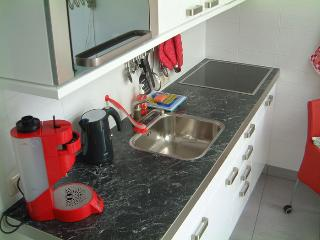 Apartment Almere near Amsterdam, 1bd, 3p. - Almere vacation rentals