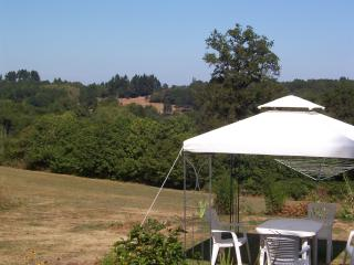 Perfect House with Internet Access and Dishwasher - Oradour-sur-Vayres vacation rentals