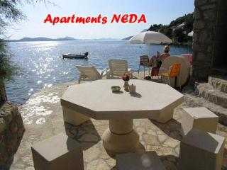 Dubrovnik holiday apartme Neda - Lozica vacation rentals