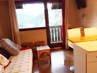 studio with a view in the centre of Villard - Villard-de-Lans vacation rentals
