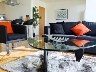Luxury 1BR Apartment with balcony on the Thames - London vacation rentals