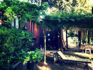 Enchanting cottage Appia Antica - Rome vacation rentals