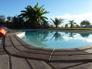 Villa with beautiful pool on the French Riviera - La Gaude vacation rentals