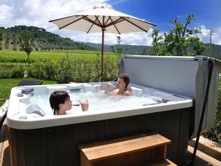 1 bedroom Condo with Internet Access in Castagneto Carducci - Castagneto Carducci vacation rentals