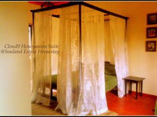 Beautiful 1 bedroom Cottage in Kushalnagar with Internet Access - Kushalnagar vacation rentals