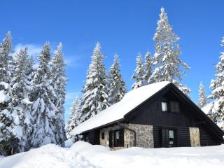 Chalet Klara - deluxe stay at Rogla - Zrece vacation rentals