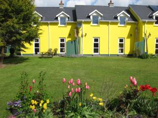 Mount Brandon Cottages 1 & 2 - Graiguenamanagh vacation rentals