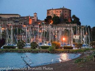 Soggiorno in borgo medioevale Tuscia viterbese - Alviano vacation rentals