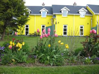 Mount Brandon Cottage House 1 - Graiguenamanagh vacation rentals
