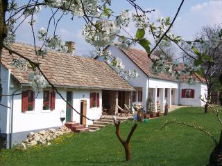 Bright Szekesfehervar Cottage rental with Internet Access - Szekesfehervar vacation rentals