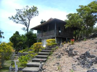 Ferienhäuser Siquijor Lotloton - Larena vacation rentals