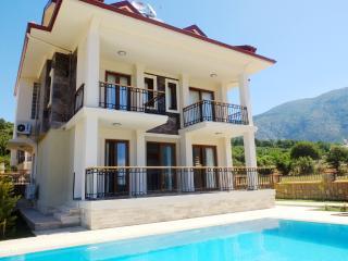 Opal Villa - Hisaronu vacation rentals