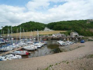 Lovely Cottage with Internet Access and Television - Axmouth vacation rentals