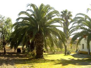 Maison de campagne en Andalousie - Villamartin vacation rentals